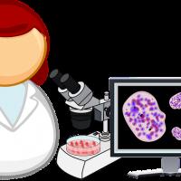 Laborator analize alimente Cluj